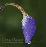 Front cover of Deep Nature