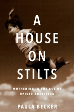 Front cover of A House on Stilts