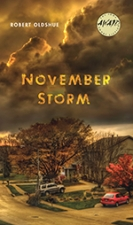 Front cover of November Storm