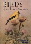 Front cover of Birds of an Iowa Dooryard