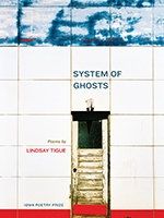 Front cover of System of Ghosts