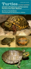 Front cover of Turtles in Your Pocket