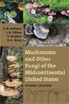 Front cover of Mushrooms and Other Fungi of the Midcontinental United States