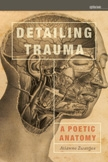 Front cover of Detailing Trauma